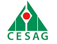 CESAG - BUSINESS SCHOOL